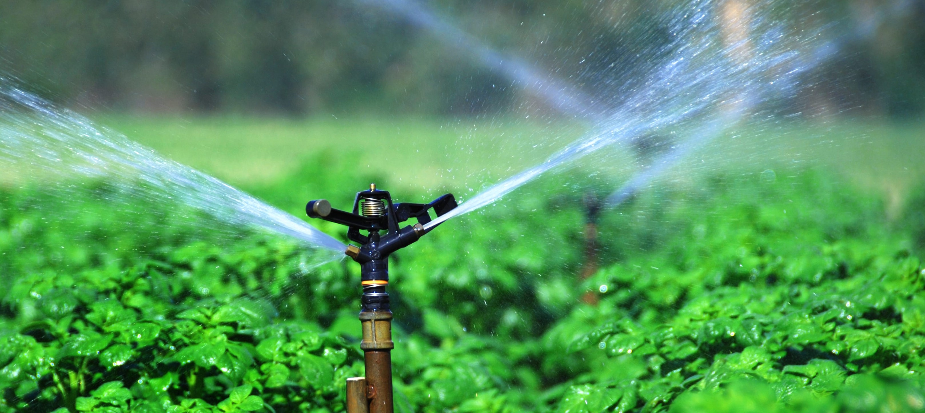 Why Sprinkler irrigation is one of the best method of irrigation in India?