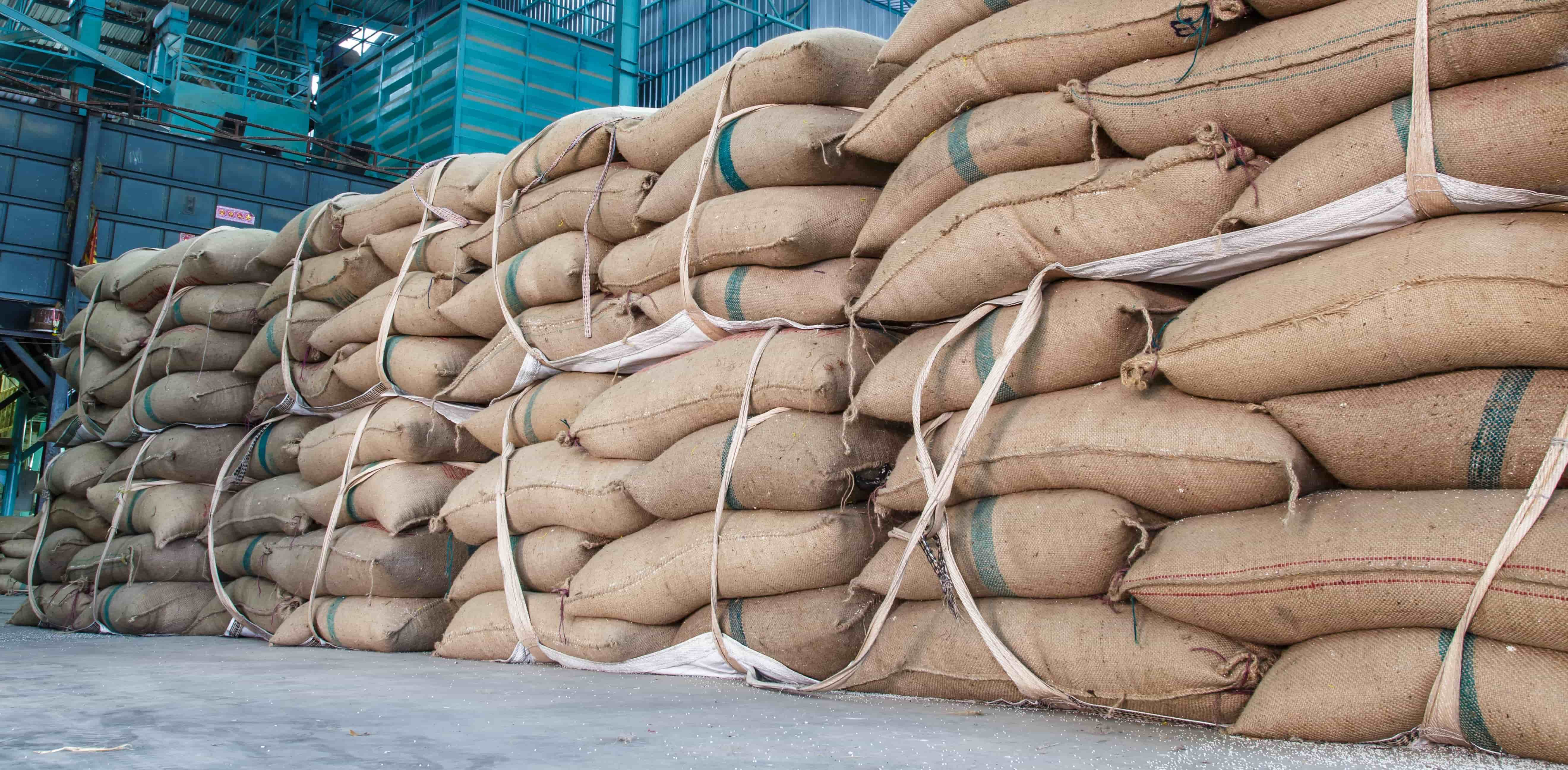 Some important things to keep in mind while storage of food grains after harvesting